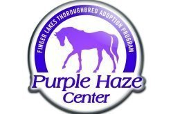Welcome – Finger Lakes Thoroughbred Adoption Program, Inc. (FLTAP)