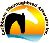 Caribbean Thoroughbred Aftercare – Welcome!